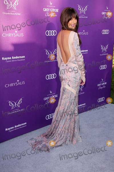 Lea Michelle,Lea Michele Photo - 2012 Chrysalis Butterfly Ball