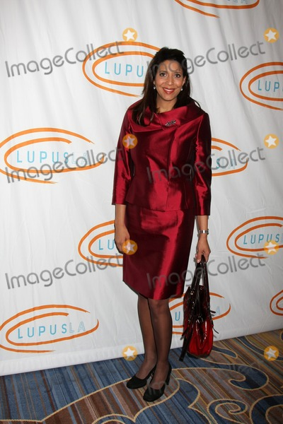 Four Seasons,Christine Devine Photo - 9th Annual Lupus LA Hollywood Ba