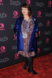 Allison Anders Photo - 13 January 2017 - Los Angeles California - Allison Anders Beaches Los Angeles Premiere held at the Regal LA Live Theater Photo Credit Birdie ThompsonAdMedia