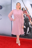 Anna Chlumsky Photo - LOS ANGELES - MAY 25  Anna Chlumsky at the FYC for HBOs series VEEP 6th Season at the ATAS Saban Media Center on May 25 2017 in North Hollywood CA