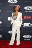 Lisa Nicole Carson Photo - LOS ANGELES - JAN 23  Lisa Nicole Carson at the BETs The New Edition Story Premiere Screening at Paramount Studios on January 23 2017 in Los Angeles CA