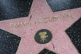 Emma Thompson Photo - Emma Thompson Hollywood Walk of Fame Star Emma Thompson Honored with a Star on the Hollywood Walk of Fame Hollywood CA 08-06-2010 Photo by Graham Whitby Boot-allstar-Globe Photos Inc 2010