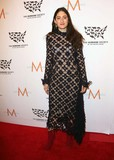 Arden Wohl Photo - Arden Wohl attends the Humane Society of the United States Annual to the Rescue New York Benefit Cipriani 42nd Street NYC November 13 2015 Photos by Sonia Moskowitz Globe Photos Inc