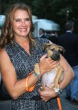 Bow Wow Photo - Brooke Shields attends the Animal Rescue Fund of the Hamptons Bow Wow Meow Ball the Arf Adoption Center Wainscott NY August 15 2015 Photos by Sonia Moskowitz Globe Photos Inc