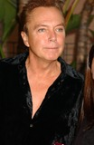 Cassidy Photo - David Cassidy 13th Annual Families Matter Benefit Celebration at the Beverly Hills Hotel in Beverly Hills California 05-29-2009 Photo by Phil Roach-ipol-Globe Photos Inc