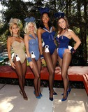 Vanessa Gleason Photo - K29724FB OPERATION PLAYMATE LAUNCHED BY PLAYBOYPLAYMATES IN BEVERLY HILLS CA THE PLAYMATES ARE MODELING EXCLUSIVE PLAYBOYBUNNY MILITARY OUTFITS3282003 PHOTO BY FITZROY BARRETT  GLOBE PHOTOS INC 2003SHAUNA SAND STEPHANIE HEINRICH NEFERTERISHEPHERD AND VANESSA GLEASON