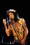 Aerosmith Photo - Steven Tyler of Aerosmith Photo by Michael FergusonGlobe Photos Inc