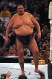 Akebono Photo - Wrestlemania 21 at the Staples Center Los Angeles CA 04-02-05 Photo by Milan RybaGlobe Photosinc2005 Akebono