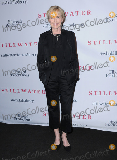 Annica Liljebald Photo - 12 February 2018 - North Hollywood California - Annica Liljebald Stillwater Los Angeles Premiere held at Laemmle NoHo 7 Photo Credit Birdie ThompsonAdMedia