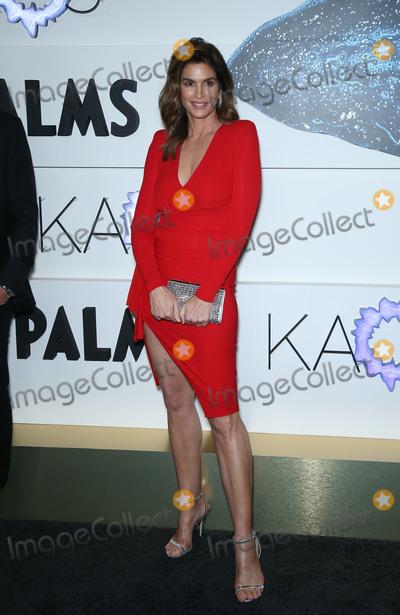 Photo - Palms Casino resort and KAOS Grand Opening