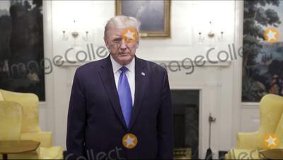 Photo - Donald Trump Twitter Statement