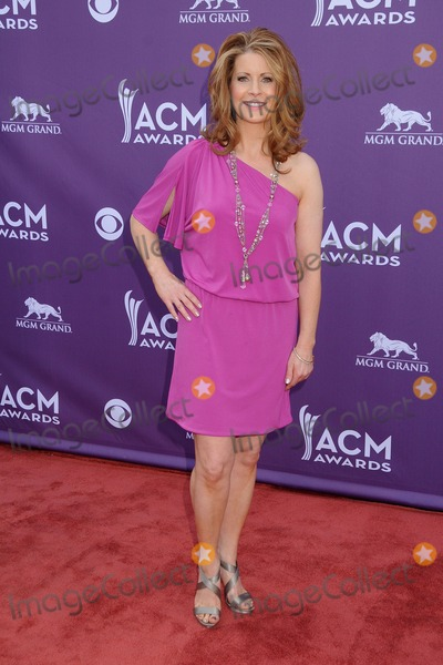 Gina Butler Photo - 7 April 2013 - Las Vegas California - Gina Butler 48th Annual Academy of Country Music Awards - Arrivals held at the MGM Grand Garden Arena Photo Credit Byron PurvisAdMedia