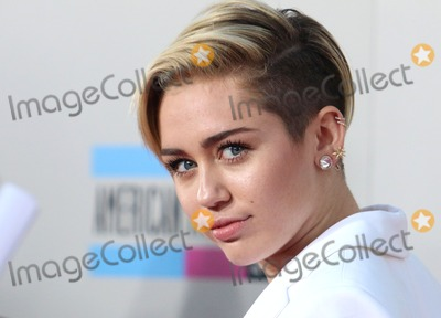 Photos From 2013 American Music Awards - Arrivals
