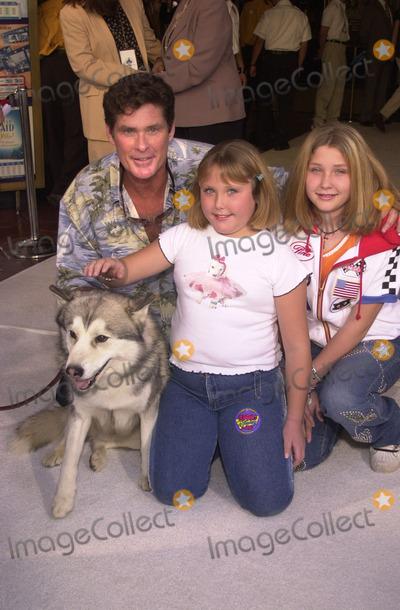 Photo - Snow Dogs Premiere
