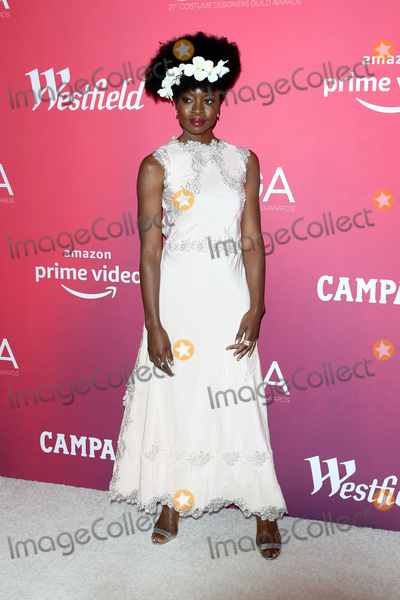 Photo - LOS ANGELES - FEB 19  Danai Gurira at the 2019 Costume Designers Guild Awards at the Beverly Hilton Hotel on February 19 2019 in Beverly Hills CA