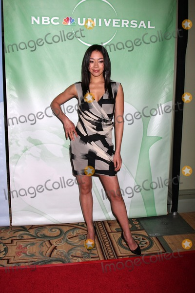 Photo - 2010 Winter NBC TCA Party