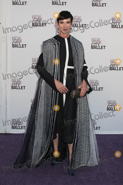 Amy Fine Collins Photo - Photo by HQBstarmaxinccomSTAR MAX2014ALL RIGHTS RESERVEDTelephoneFax (212) 995-119692314Amy Fine Collins at the New York City Ballet Fall Gala(NYC)