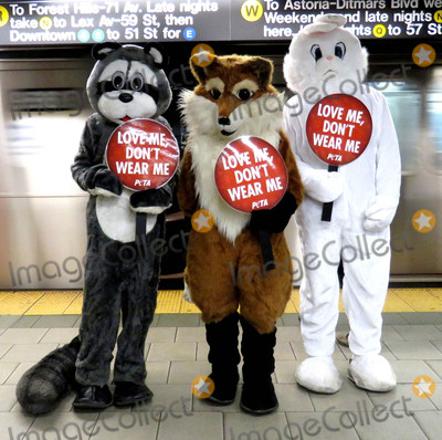 The Subways Photo - Photo by PETAstarmaxinccomSTAR MAX2015ALL RIGHTS RESERVEDTelephoneFax (212) 995-1196121516Its Christmastime in the cityand a fleet of PETA mascots including two rabbits a fox and a raccoon will hit the streets and the subway on Thursday to encourage holiday shoppers to keep fur off their shopping lists The costumed crusadersalong with human helpers wielding anti-fur signs and leafletswill start in Herald Square at noon and then take the R train to Prince Street PETAs mascot pals will remind shoppers from Macys to Bloomingdales that every fur coat collar or cuff costs sensitive animals their lives says PETA Associate Director Ashley Byrne Caring people can offer animals a little comfort and joy this holiday season by refusing to buy or wear fur PETAwhose motto reads in part that animals are not ours to wearnotes that most animals used for fur spend their entire lives confined to cramped filthy wire cages until they are bludgeoned poisoned electrocuted or even skinned alive Thats part of why a growing number of top designers and retailersincluding Stella McCartney Calvin Klein Vivienne Westwood Giorgio Armani HM Topshop Zara Urban Outfitters Gap Inc JCrew and many moreare all fur-free