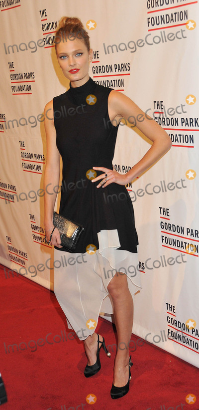 Photo - The Gordon Parks Foundation Awards Dinner And Auction