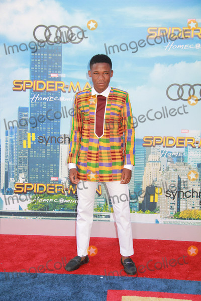 Photo - The World Premiere of Spider-Man Homecoming