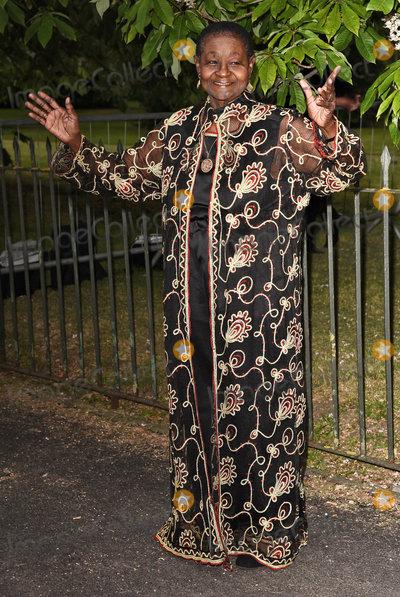 Calypso Rose Photo - London UK  Calypso Rose   at The Serpentine Gallery Summer Party at Kensington Gardens London 6th July 2016 Ref LMK392-60819-070716Vivienne VincentLandmark Media WWWLMKMEDIACOM