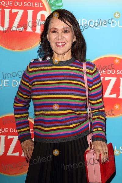 Arlene Phillip Photo - London UK Arlene Phillips at Cirque du Soleil Luzia Press Night at the Royal Albert Hall Kensington London on January 15th 2020Ref LMK73-J6034-160120Keith Mayhew Landmark MediaWWWLMKMEDIACOM
