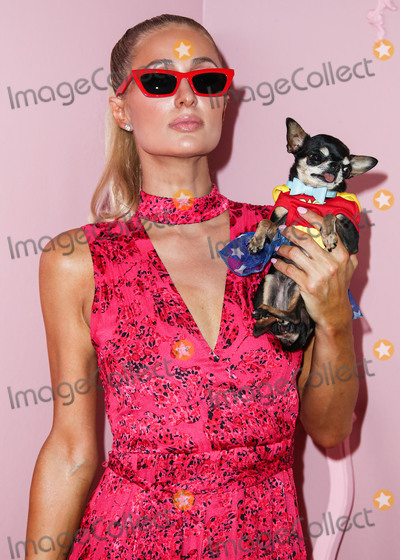 Alice  Olivia Photo - MANHATTAN NEW YORK CITY NEW YORK USA - SEPTEMBER 09 Paris Hilton arrives at alice  olivia By Stacey Bendet during New York Fashion Week The Shows held at ROOT Studios on September 9 2019 in Manhattan New York City New York United States (Photo by Xavier CollinImage Press Agency)
