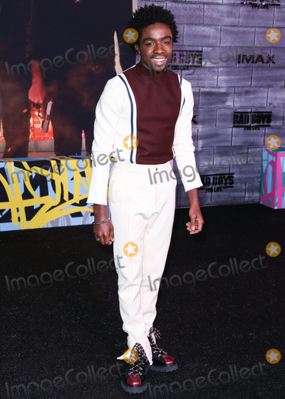Photo - Los Angeles Premiere Of Columbia Pictures Bad Boys For Life