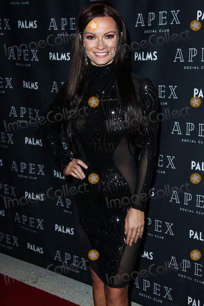Photo - Robin Thicke NYE Weekend 2019 Kick Off at APEX Social Club