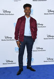 Aubrey Joseph Photo - 20 May 2018 - Burbank California - Aubrey Joseph 2018 DisneyABC International Upfronts held at Walt Disney Studios Photo Credit Birdie ThompsonAdMedia