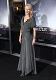 Alison Eastwood Photo - 10 December 2018 - Westwood California - Alison Eastwood The Mule Los Angeles Premiere held at Regency Village Theater Photo Credit Birdie ThompsonAdMedia