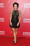 DEMI  LOVATO Photo - 13 February 2016 - Los Angeles California - Demi Lovato 2016 MusiCares Person Of The Year Honoring Lionel Richie held at The Los Angeles Convention Center Photo Credit Byron PurvisAdMedia