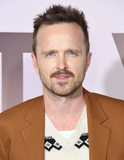 Aaron Paul Photo - 05 March 2020 - Hollywood California - Aaron Paul HBOs Westworld Season 3 Los Angeles Premiere held at TCL Chinese Theatre Photo Credit Birdie ThompsonAdMedia