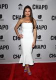 El Chapo Photo - 19 April 2017 - Los Angeles California - Juliette Pardau Univisions El Chapo Original Series Premiere Event held at The Landmark Theatre Photo Credit AdMedia