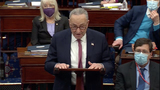 The Used Photo - In this image from United States Senate television United States Senate Majority Leader Chuck Schumer (Democrat of New York) speaks during Day 5 of the second impeachment trial of the former president in the US Senate in the US Capitol in Washington DC on Saturday February 13 2021Mandatory Credit US Senate TV via CNPAdMedia