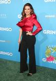 Alicia Machado Photo - 06 March 2018 - Los Angeles California - Alicia Machado Amazon Studios and STX Films Gringo Los Angeles Premiere held at Regal LA Live Stadium 14 Photo Credit F SadouAdMedia