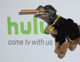 Triumph Photo - 05 August 2016 - Beverly Hills California Triumph The Insult Comic Dog 2016 Hulu Summer TCA held at the Beverly Hilton Hotel Photo Credit Birdie ThompsonAdMedia