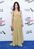 Abigail Spencer Photo - 03 March 2018 - Santa Monica California - Abigail Spencer 2018 Film Independent Spirit Awards -Arrivals held at the Santa Monica Pier Photo Credit Birdie ThompsonAdMedia