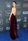 Emmy Rossum Photo - 13 January 2019 - Santa Monica California - Emmy Rossum The 24th Annual Critics Choice Awards held at Barker Hangar Photo Credit Birdie ThompsonAdMedia