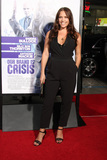 Agnes Bruckner Photo - Agnes Brucknerat the Our Brand Is Crisis Premiere Chinese Theater Hollywood CA 10-26-15