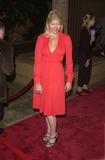 Sarah Ann Morris Photo -  Sarah Ann Morris at the premiere of The Way Of The Gun in Hollywood 08-29-00