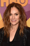 Amy Brenneman Photo - Amy Brennemanat the HBO Golden Globes After Party Beverly Hilton Beverly Hills CA 01-07-18