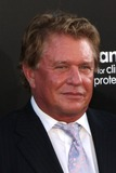 Tom Berenger Photo - LOS ANGELES - JUL 13  Tom Berenger arrive at the Inception Premiere at Graumans Chinese Theater on July13 2010 in Los Angeles CA