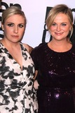 Lena Dunham Photo - LOS ANGELES - NOV 11  Lena Dunham Amy Poehler at the PEN Center USA 24th Annual Literary Awards at the Beverly Wilshire Hotel on November 11 2014 in Beverly Hills CA
