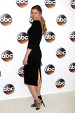 Jes Macallan Photo - LOS ANGELES - AUG 4  Jes Macallan at the ABC TCA Summer 2016 Party at the Beverly Hilton Hotel on August 4 2016 in Beverly Hills CA