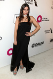 Ally Hilfiger Photo - LOS ANGELES - FEB 24  Ally Hilfiger at the Elton John Oscar Viewing Party on the West Hollywood Park on February 24 2019 in West Hollywood CA