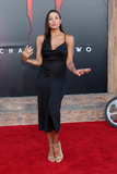Dania Ramirez Photo - LOS ANGELES - AUG 26  Dania Ramirez at the It Chapter Two Premiere at the Village Theater on August 26 2019 in Westwood CA