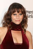 Amy Landecker Photo - LOS ANGELES - FEB 24  Amy Landecker at the Elton John Oscar Viewing Party on the West Hollywood Park on February 24 2019 in West Hollywood CA