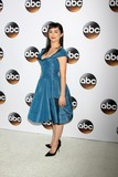 Molly Ephraim Photo - LOS ANGELES - JAN 14  Molly Ephraim at the ABC TCA Winter 2015 at a The Langham Huntington Hotel on January 14 2015 in Pasadena CA