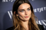 Andreea Diaconu Photo - Photo by Dennis Van TinestarmaxinccomSTAR MAXCopyright 2015ALL RIGHTS RESERVEDTelephoneFax (212) 995-119611415Andreea Diaconu at the WSJ Magazine Innovator Awards(Museum of Modern Art NYC)